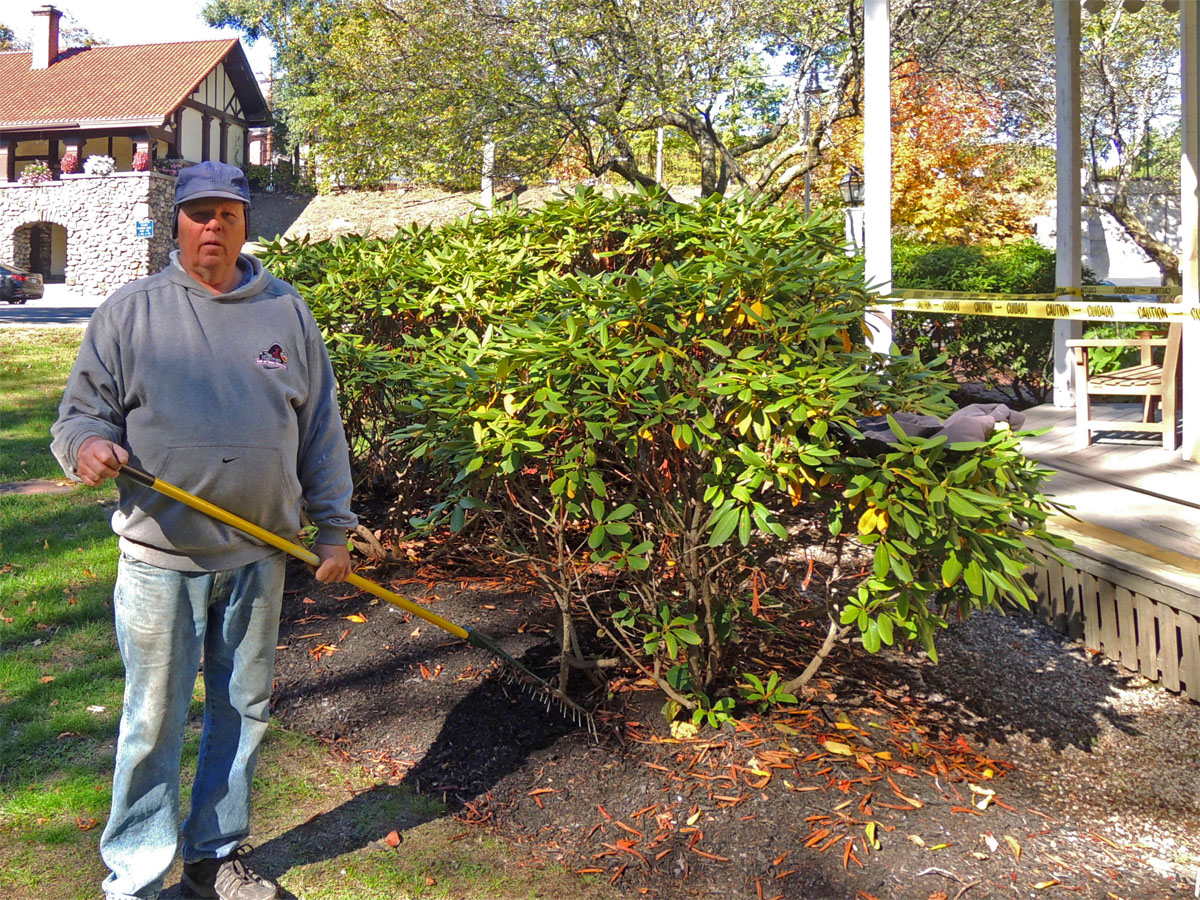 Fall Cleanup Of The Foundation Plantings